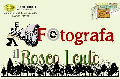 Fotografa il Bosco Lento